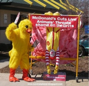Yeah McDonalds you dicks, why don't you cut dead chickens throats instead, unfeeling bastards.